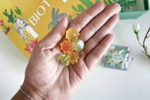 Bonbons Biotyfull Box